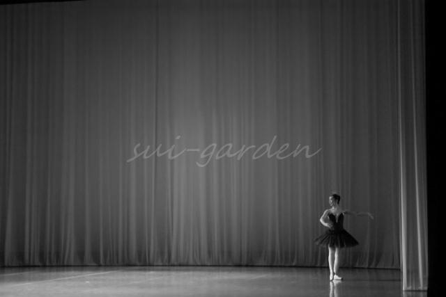 Garden013