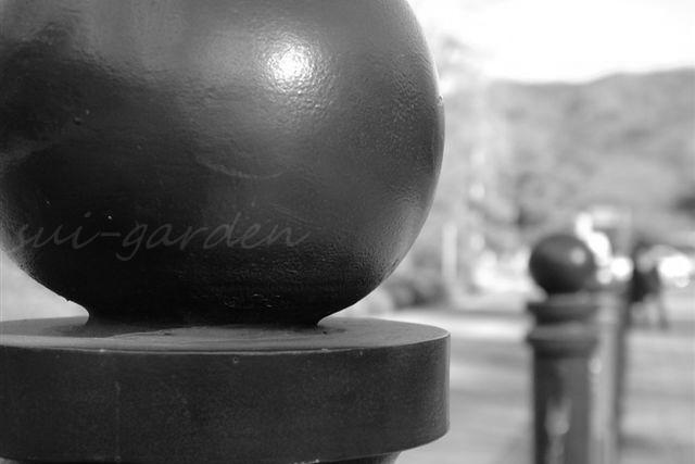 Garden137