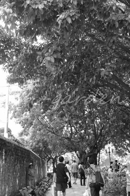 Garden193