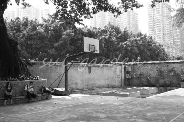 Garden199