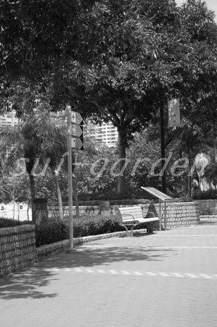 Garden219_2
