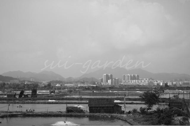Garden273